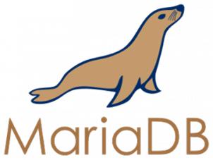 MariaDB Consultancy en beheer. Database support, advies en ontwerp. Ook 1 dagstuning mogelijk!